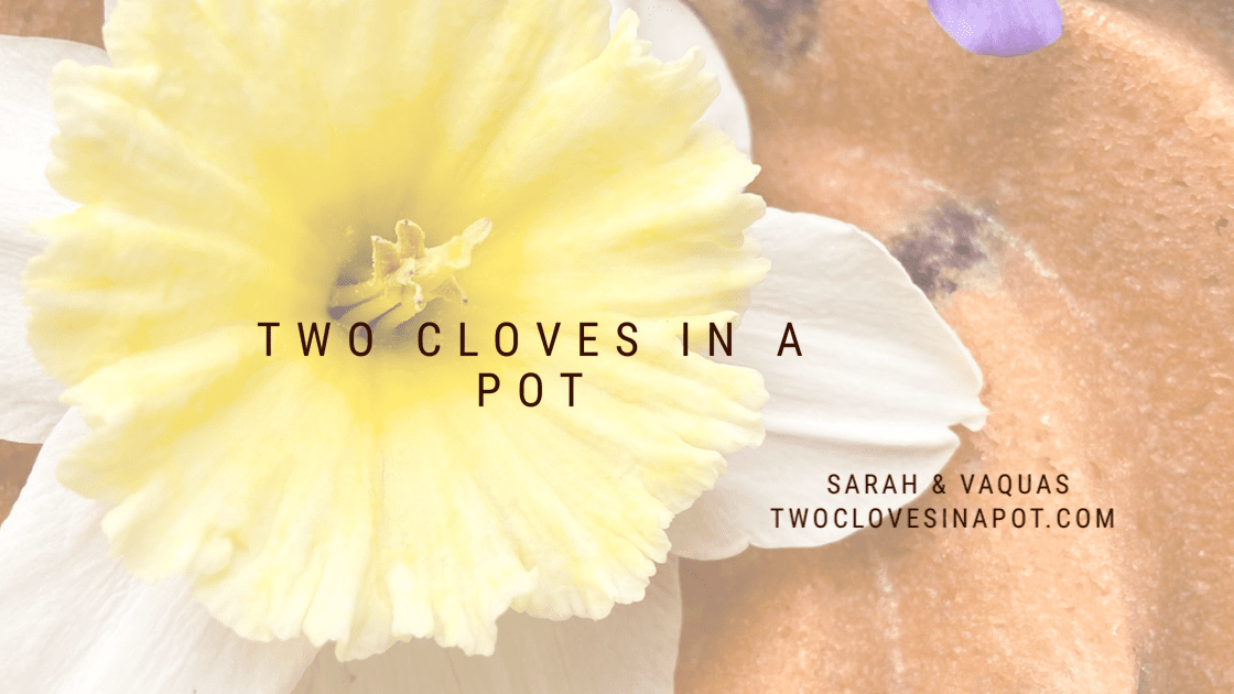 Two Cloves In A Pot